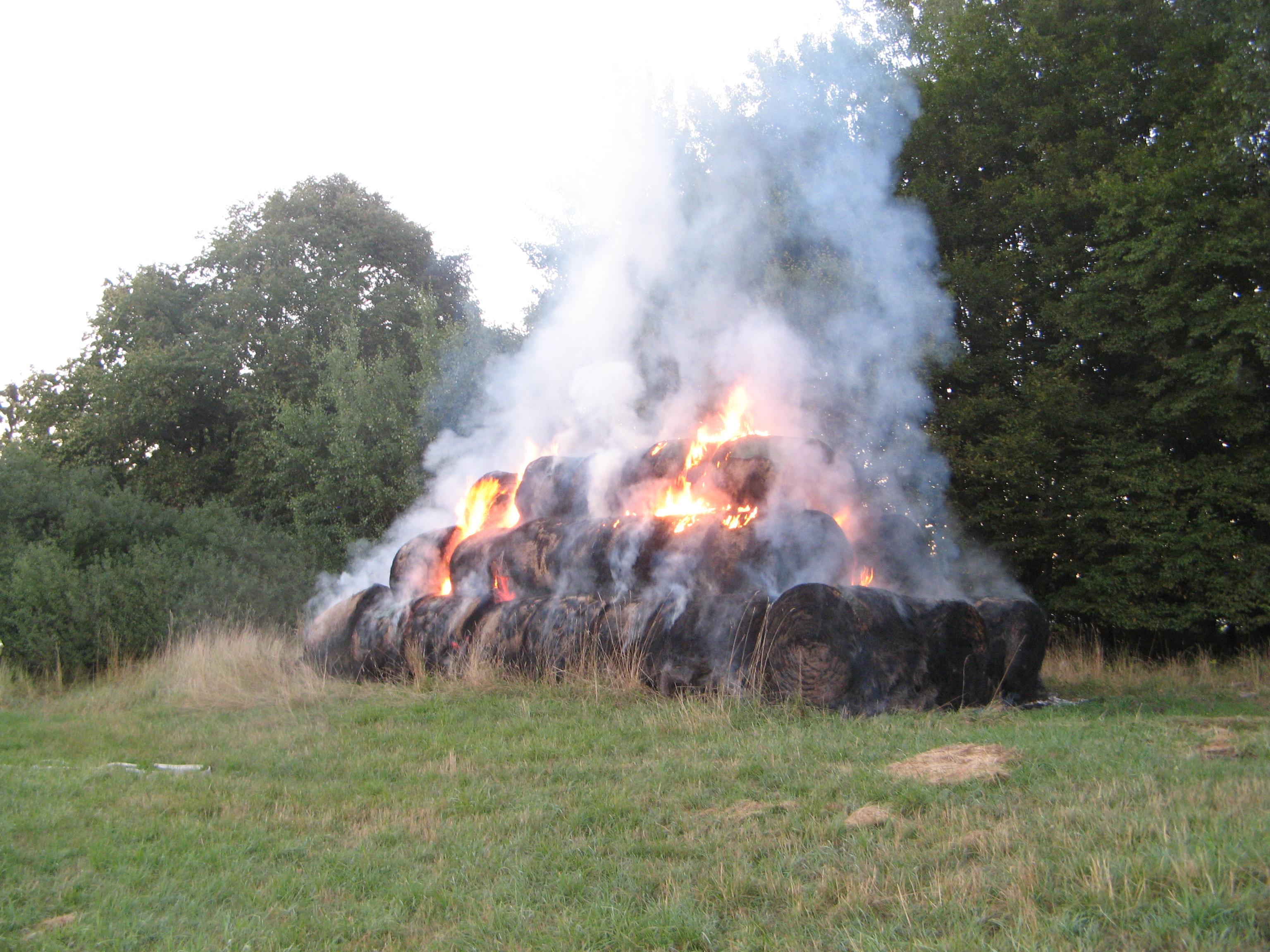 Feuer (mittel)
